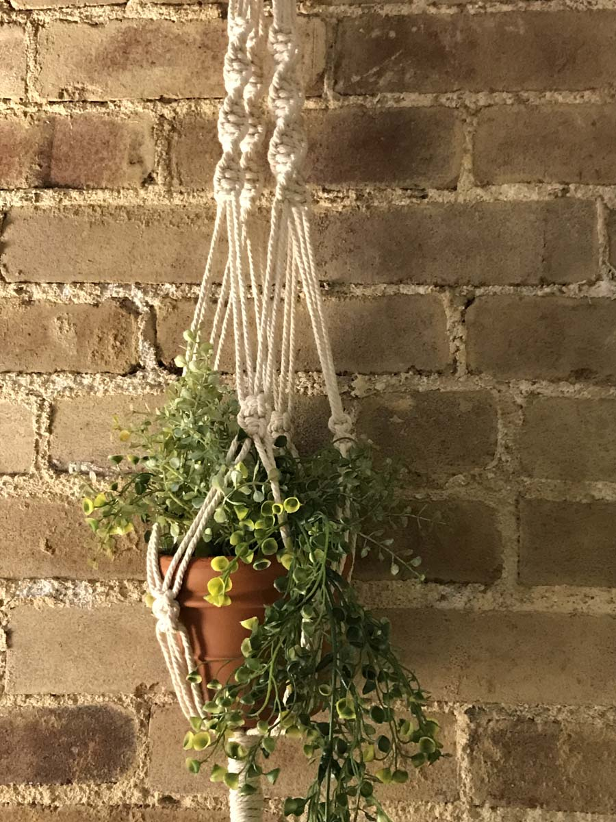 Plant in macrame woven hanging basket against brick wall.