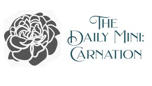 Black and white line art drawing of a carnation with the words The Daily Mini: Carnation.