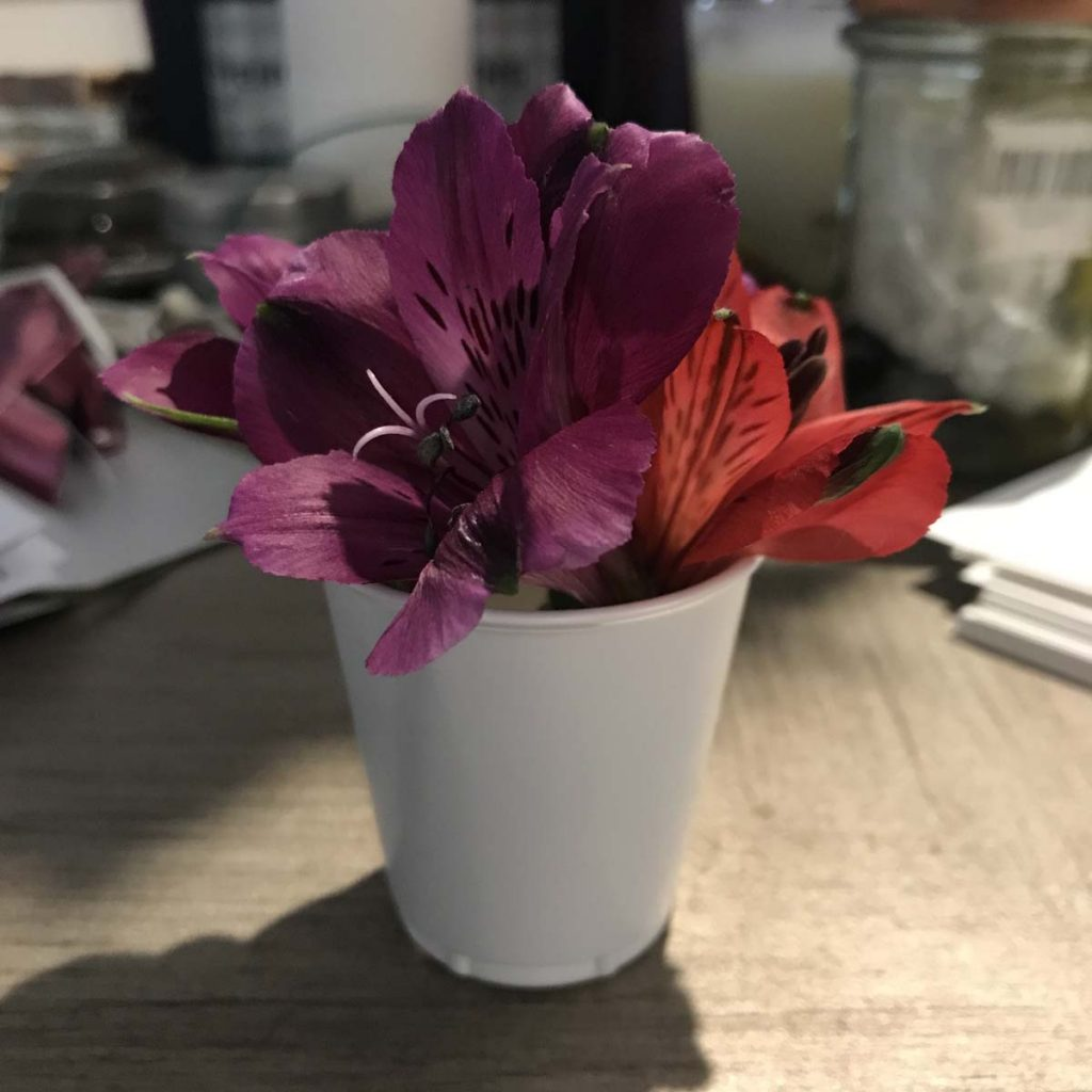 Purple and red flowers in a cup on a desk.